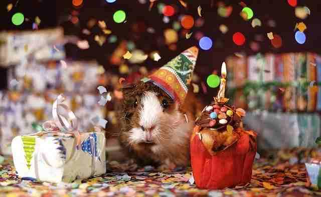 ucapan selamat ulang tahun untuk sahabat tersayang